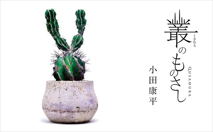 Qusamura(叢)小田康平さんのエッセイ「叢のものさし」 | 植物生活