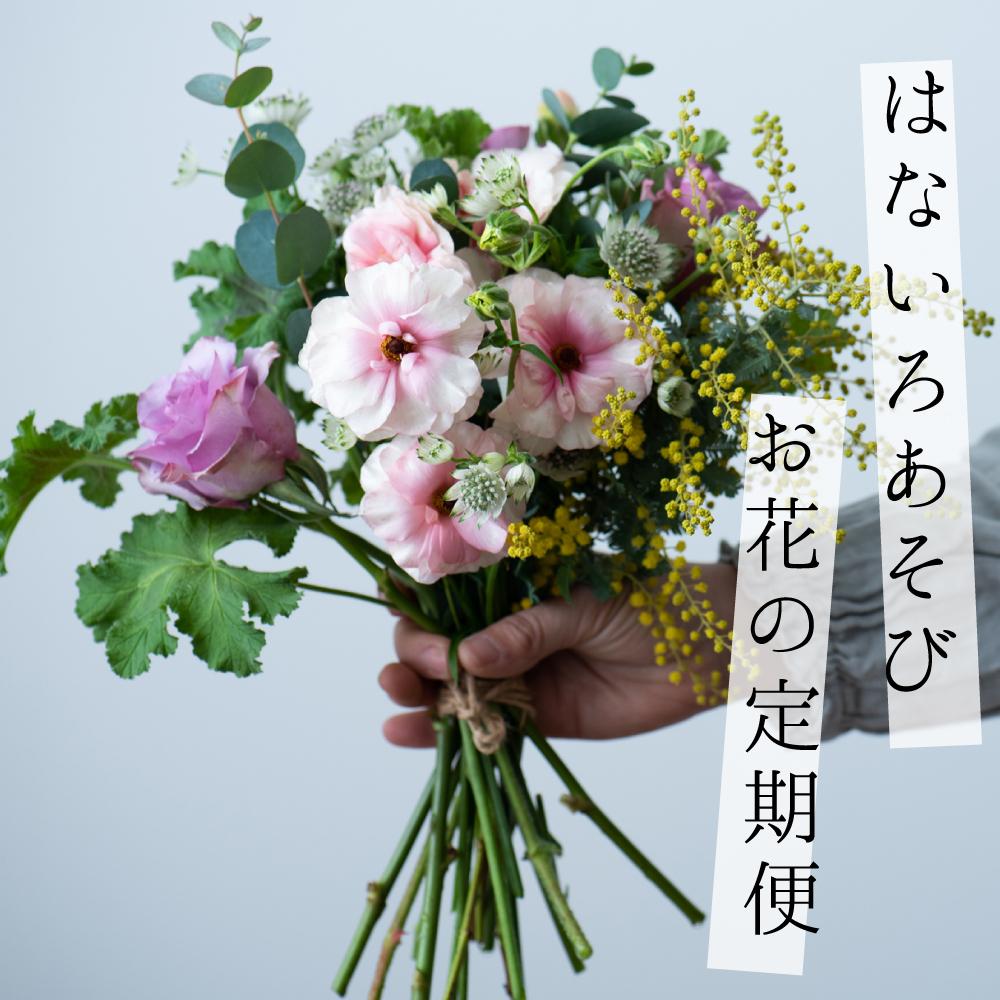 の 定期 便 お花