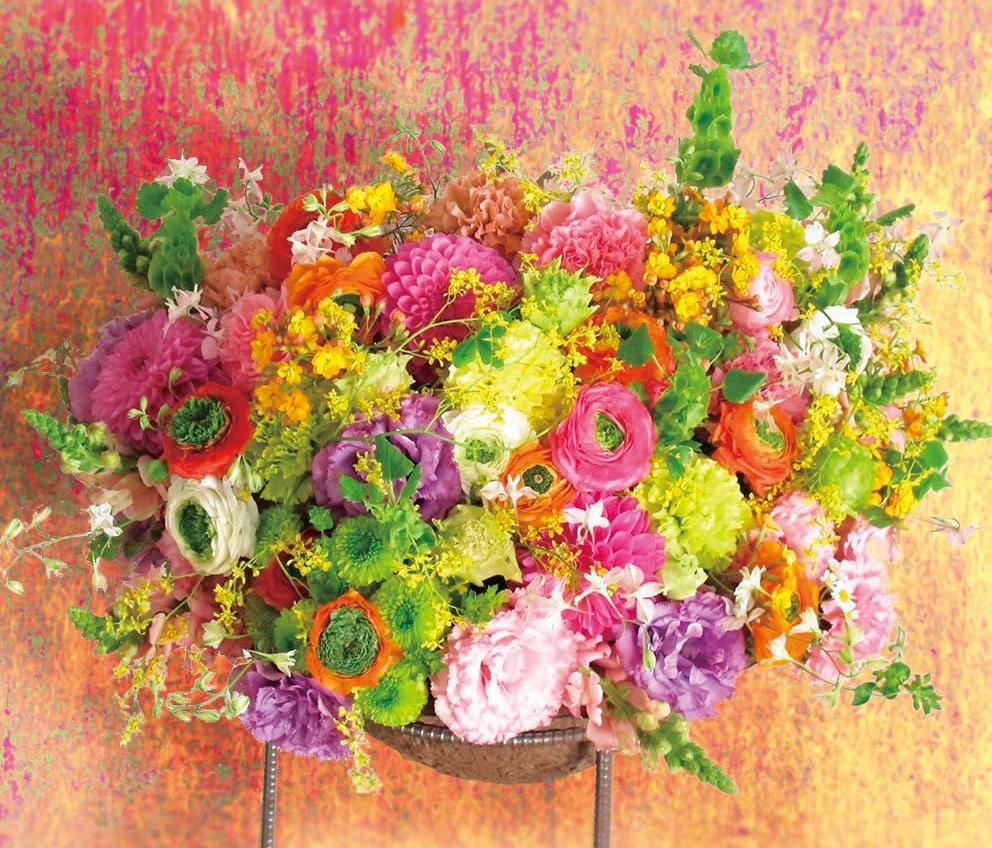 植物生活 Nothing But Flowers