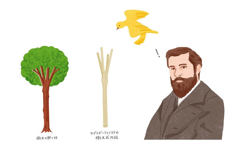 ガウディと植物 植物生活